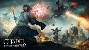 Review: Citadel: Forged with Fire