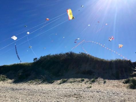 Billedet taget fra strande op mod Dragefestival i Liseleje.