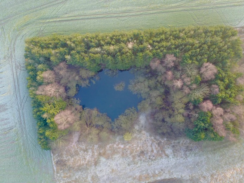Luftfoto af skov og sø ved Sorø.