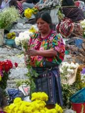 Markt (13)