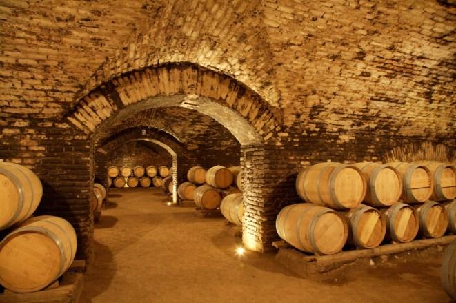 Concha y Toro Cellar