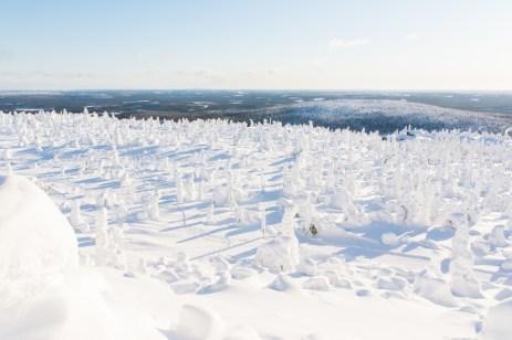 Lapland