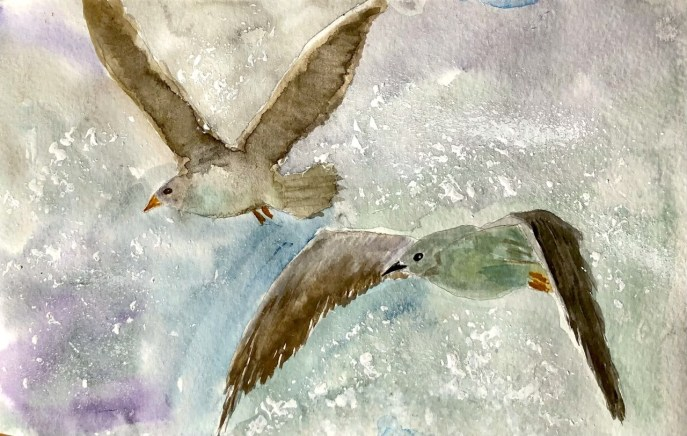 Seagulls in Flight (watercolor, 9x5) - NFS