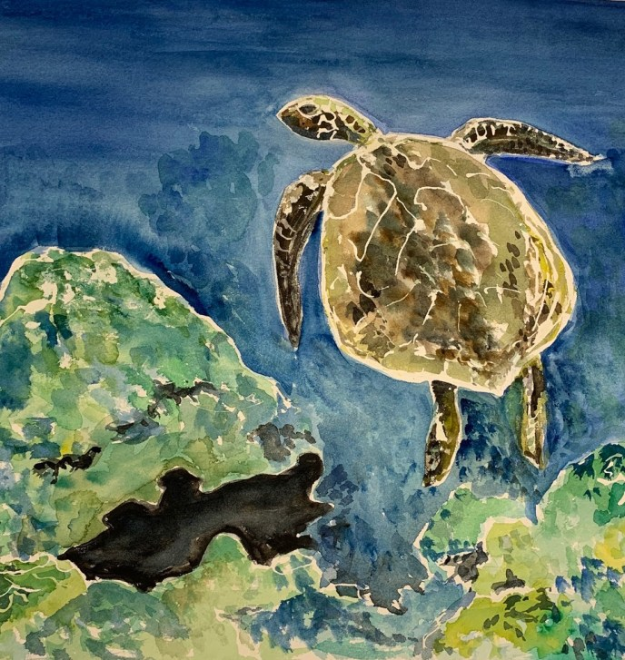 """Sea Turtle"" (watercolor), NFS"