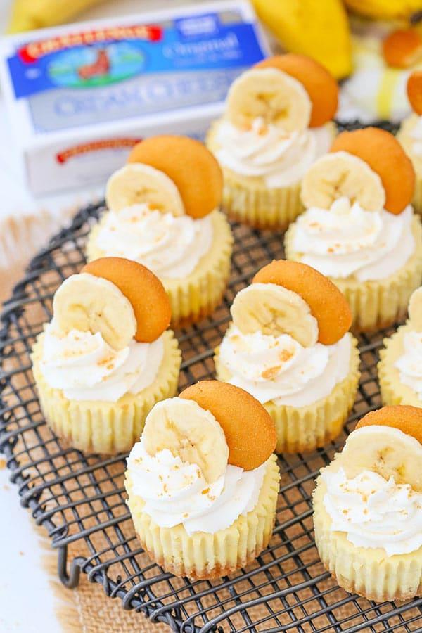 Mini Cheesecakes Vanilla Wafers