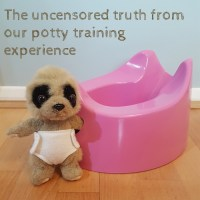 The uncensored truth from our potty training experience