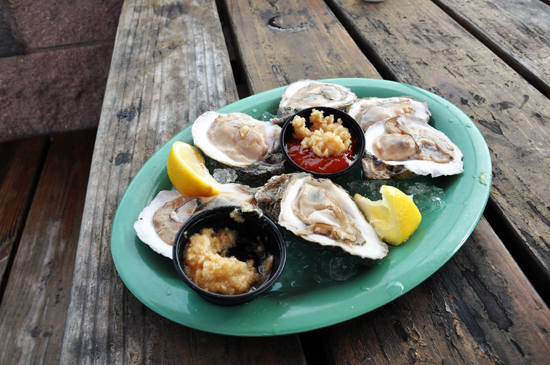 oysters, picnic table, cocktail sauce and horseradish