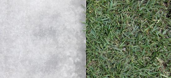 concrete and grass