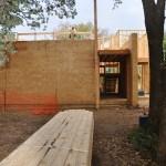 Cottonwood Modern – Framing Update