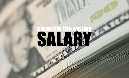 Show me the money - An Architect's Salary