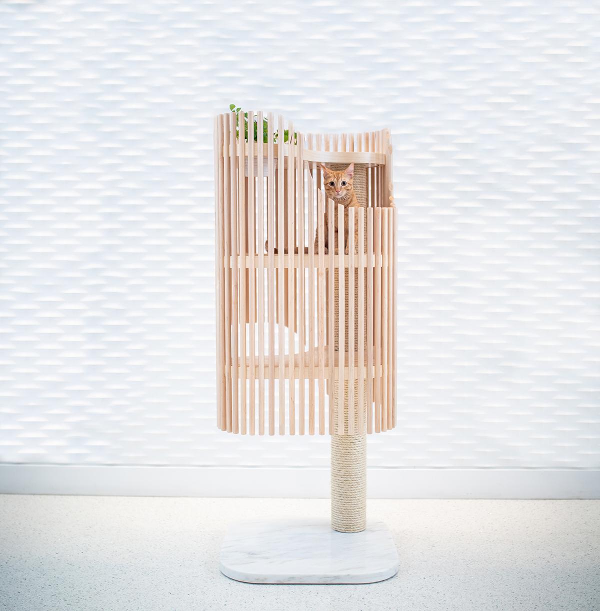 Cat Tower - Malone Maxwell Borson Architects