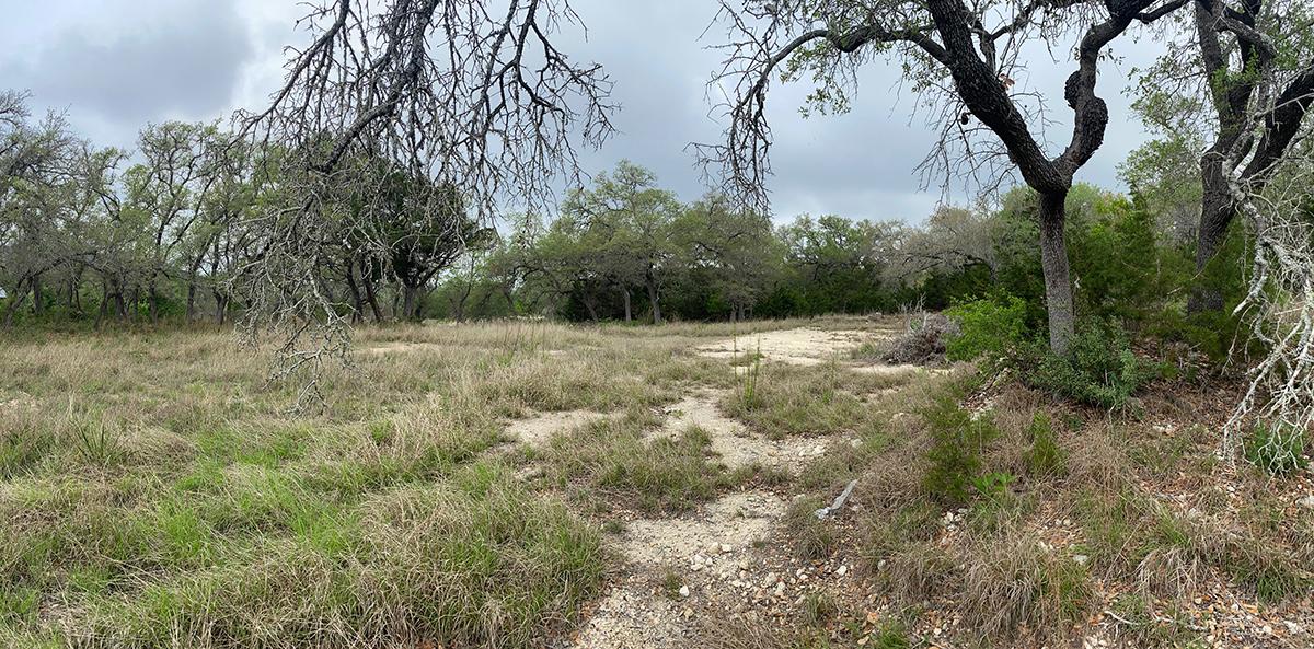 San Antonio Lower Site - The Front Door Experience
