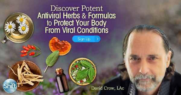 Botanical Antiviral