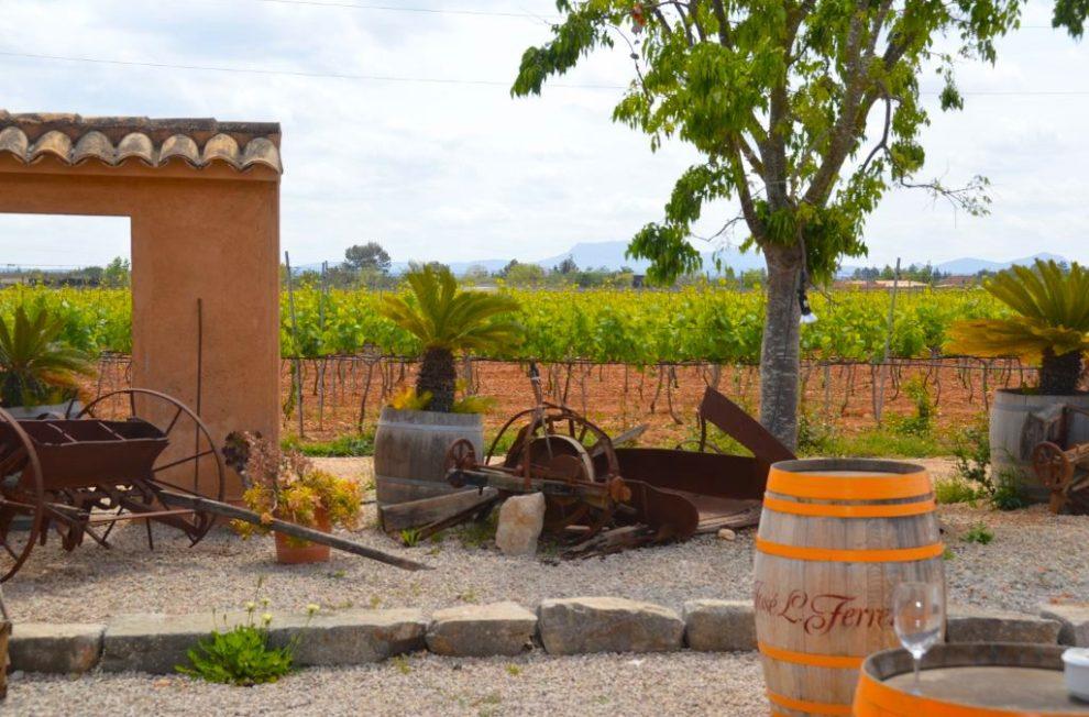 Jose L Ferrer Winery, Mallorca