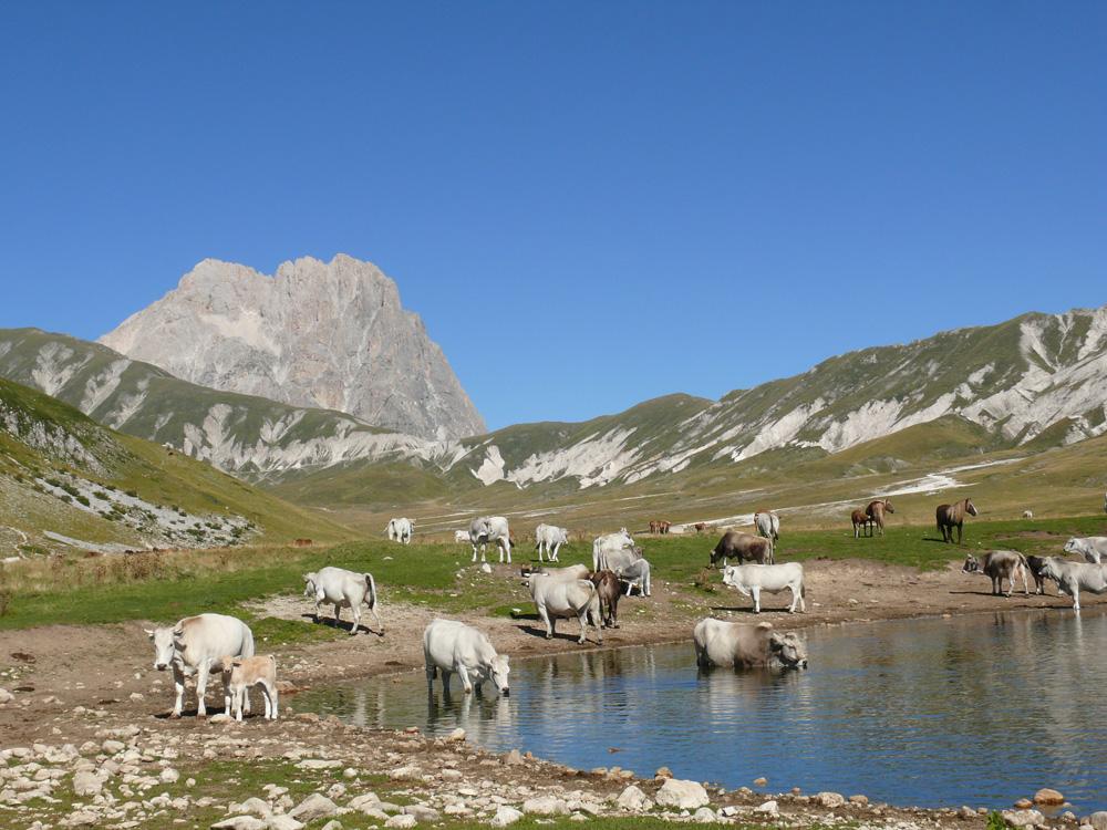 Il Parco Nazionale del Gran Sasso e Monti della Laga