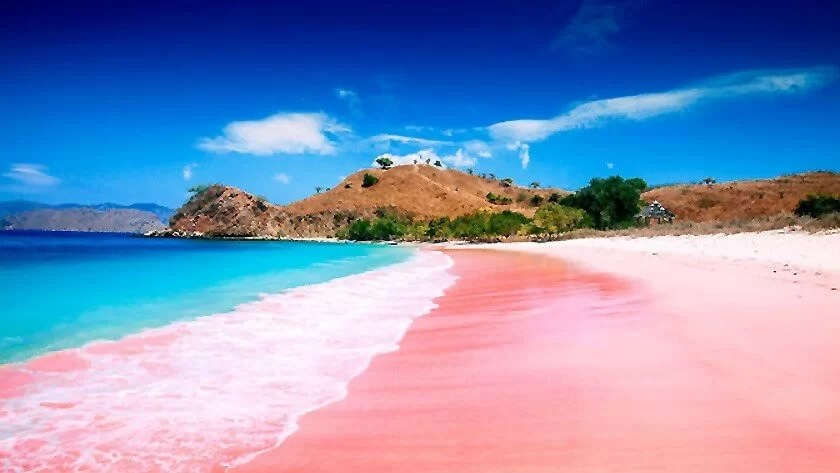 Top 10 Clear Water Beaches - Pink Beach, Komodo National Park, Indonesia