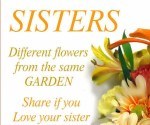 Sisters Different Flowers....