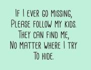 If I Ever Go Missing...