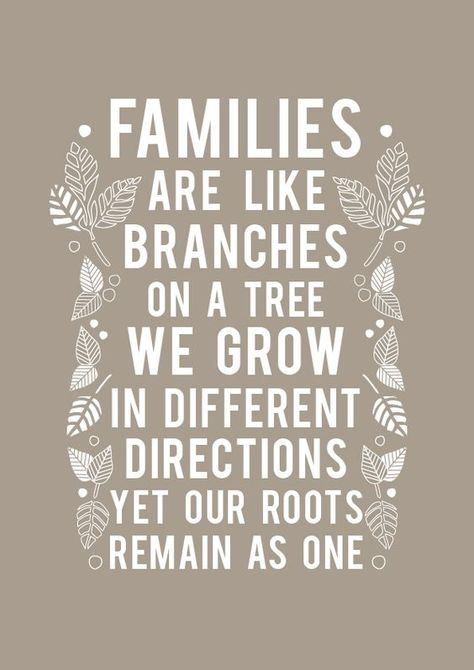 Families Are Like Branches...