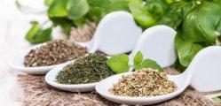 Herbal Remedies in Lowering Blood Glucose Levels ( Herbs That Treat Diabetes )