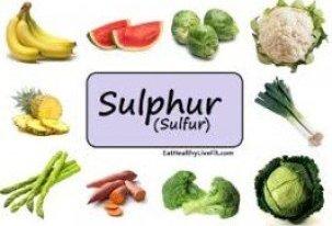 Foods High In Sulfur