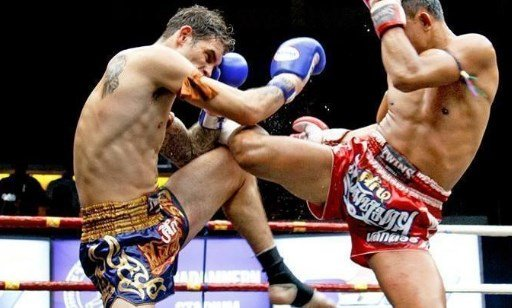 Best Combat Sports For A Good Workout