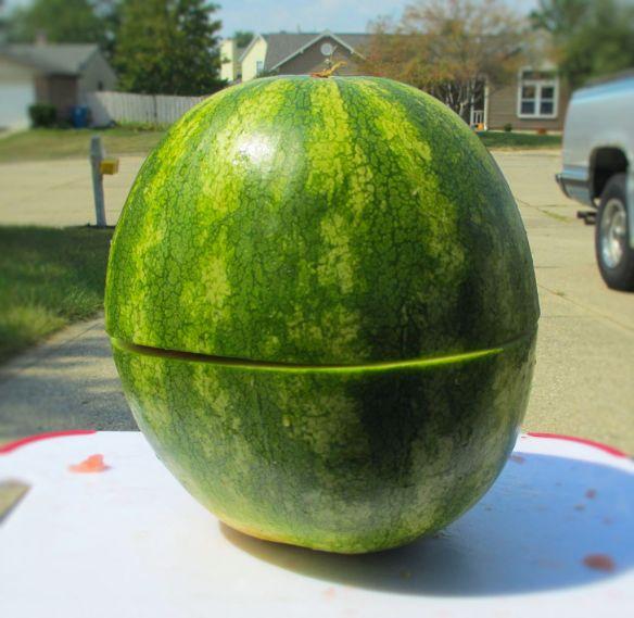 Skinned Watermelon