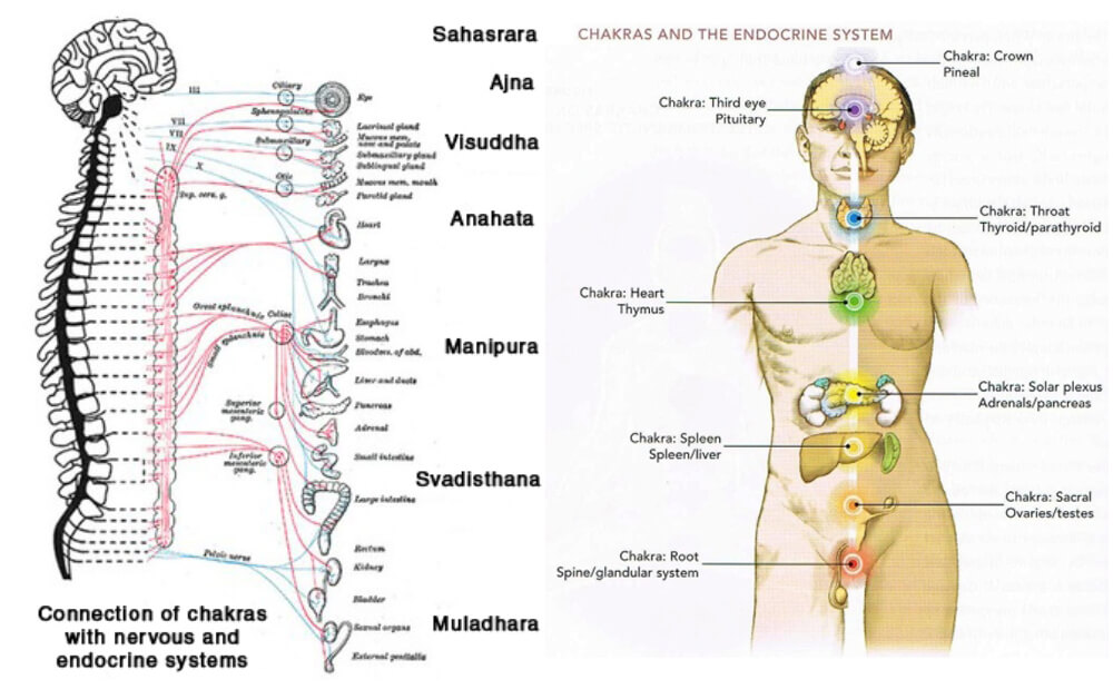Physics Of Seven Chakras And How To Balance 7 Chakras