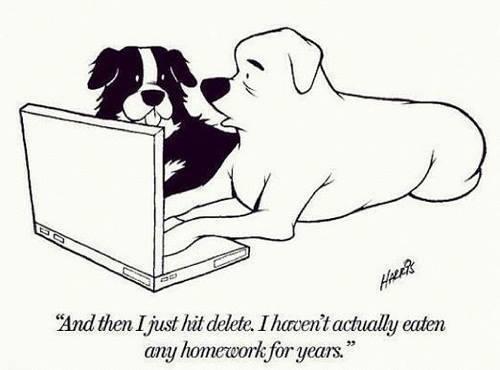 Academics!