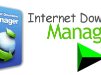 internet download manager | Lifestan