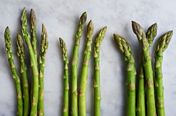 Asparagus - Lifestan