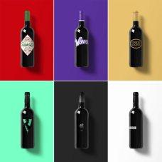 bottiglie di vino 05