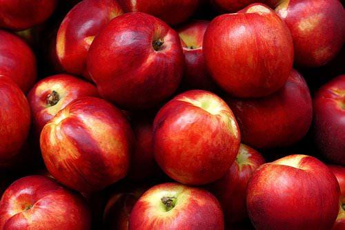 New Item on Dana's Menu – Nectarine Purees!