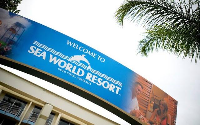 Dana Tours Sea World!