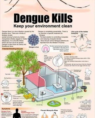Dengue Kills, Do the 5-Step Mozzie Wipeout