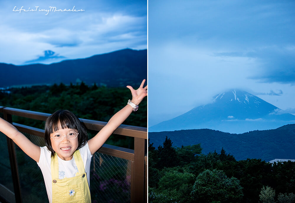 HakoneTripCollage 1