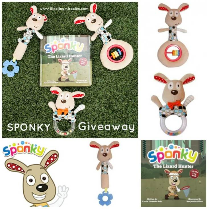SponkyToysGiveaway Collage