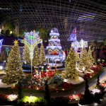 Christmas at Gardens by the Bay 2016 – Merry Medley Garden Trail