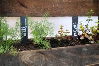 How to Make a DIY Vertical Pallet Herb Garden