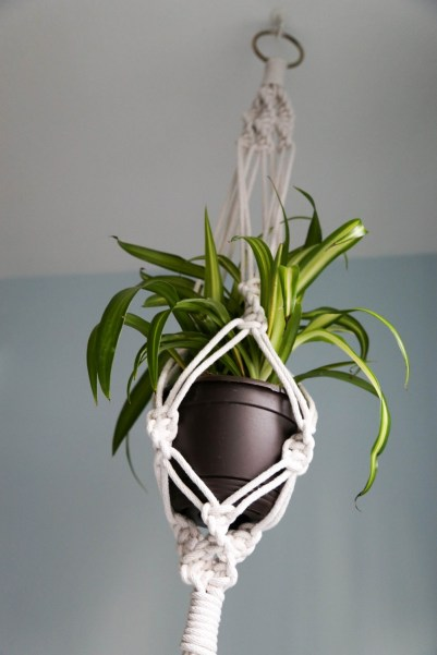 diy hanging plant holder macrame