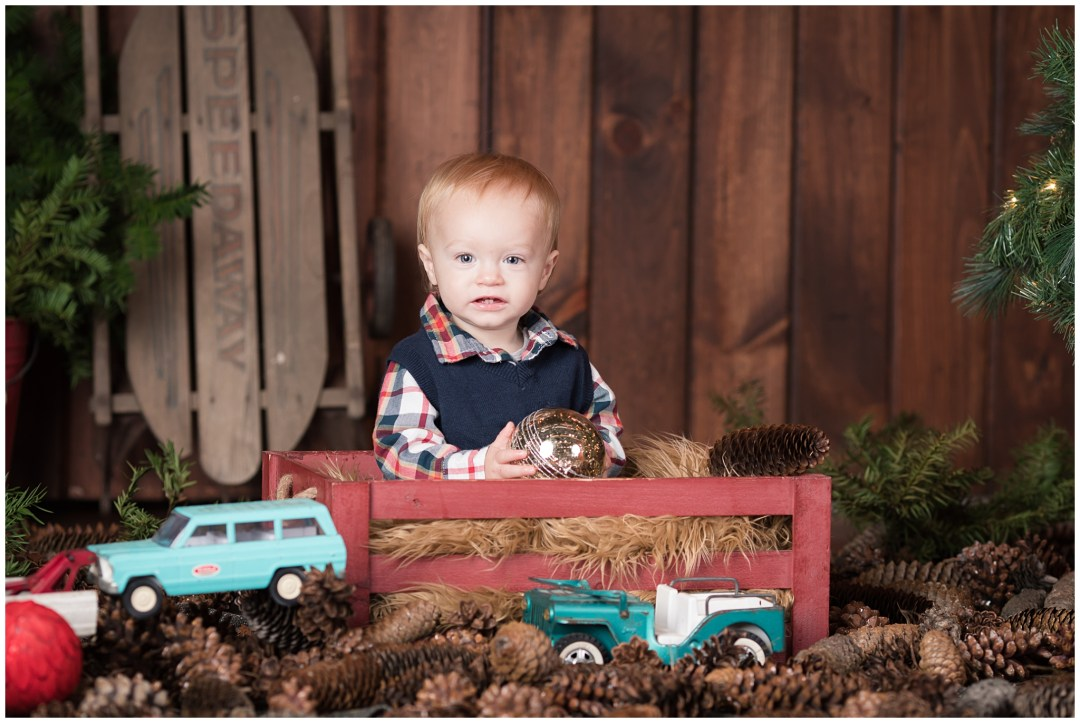 ChristmasMiniSessions_family-baby-kids_Berks-County-Reading-PA_0021.jpg