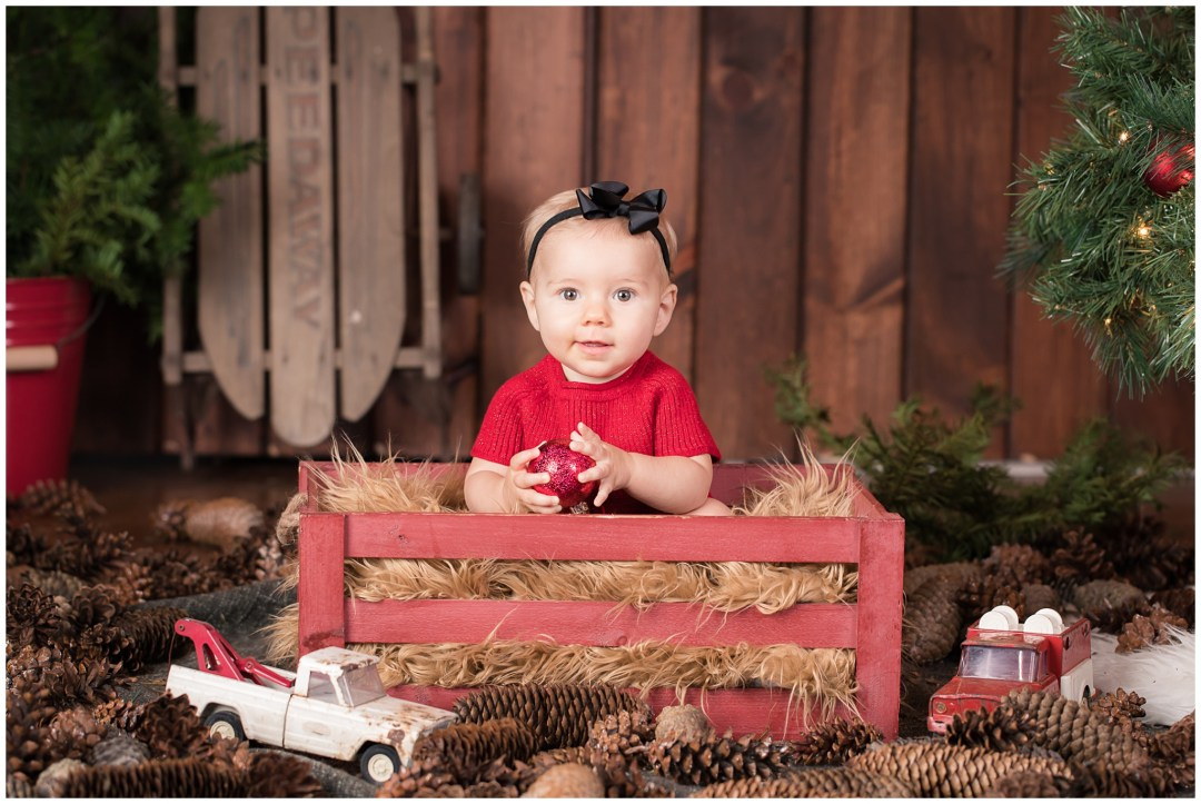 ChristmasMiniSessions_family-baby-kids_Berks-County-Reading-PA_0038.jpg