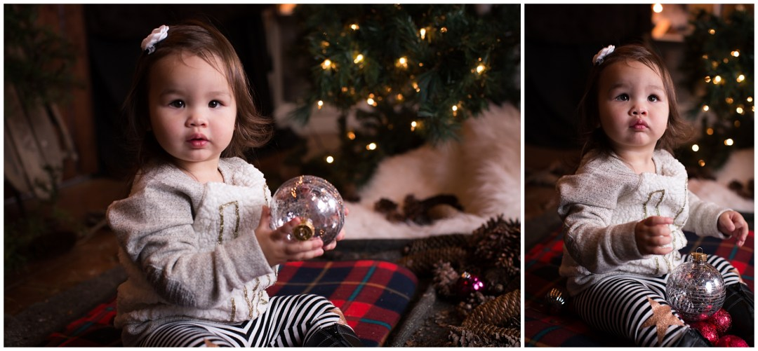 ChristmasMiniSessions_family-baby-kids_Berks-County-Reading-PA_0044.jpg