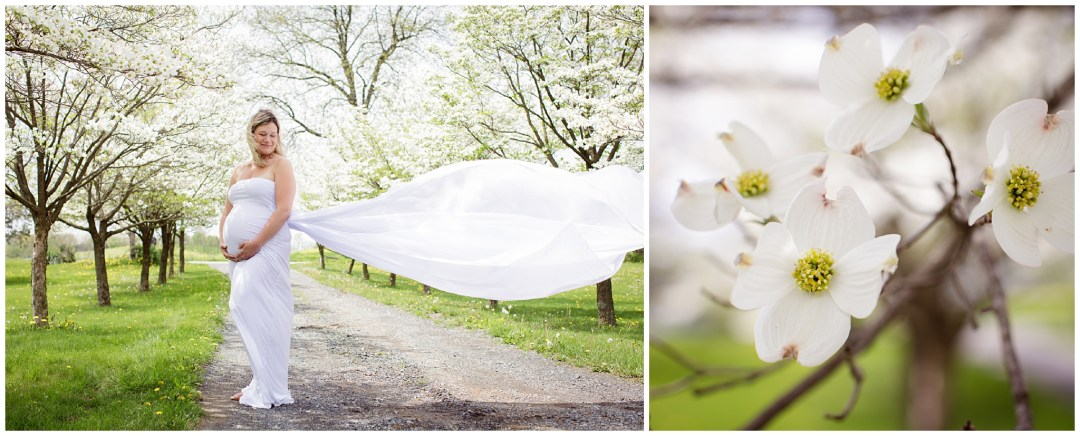 Wedding Photographers in Berks County PA_0253.jpg