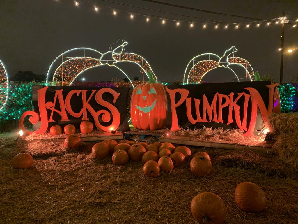 jacks-pumpkin-pop-up-.jpg