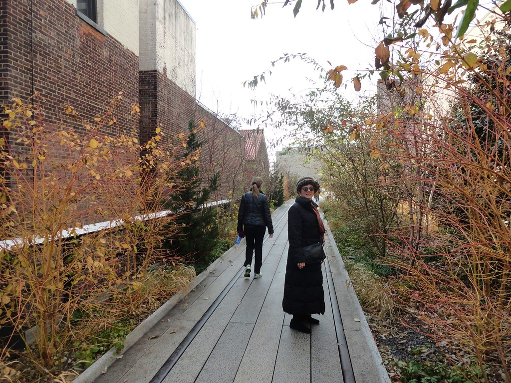 Kat strolls through winter plants, High Line Park, New York City