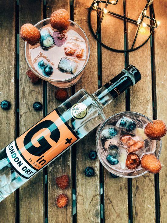 Top 5 Gin Rezepte für den heißen Sommer