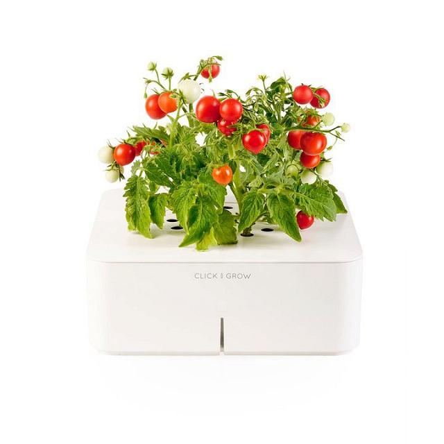 Click & Grow Electronic Smartpot Plants_5