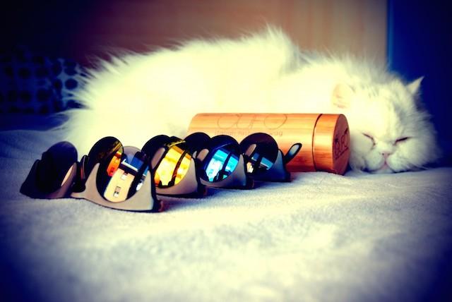 GUFO fashion design Original Wooden Sunglasses_3