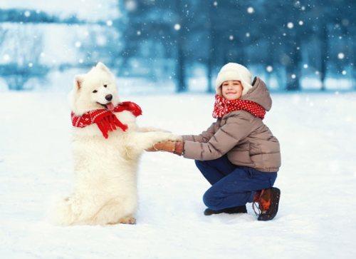 girl walkking her dog in winter